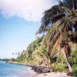 ZMAP Apia, Samoa – An Alan Roycroft Station